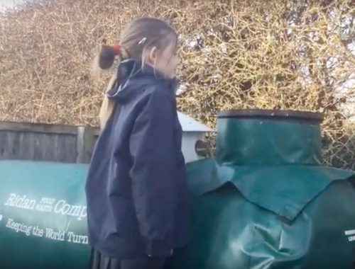 food waste recycling at Copthill School
